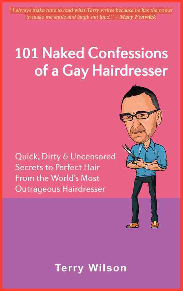 101 Naked Confessions of a Gay Hairdresser by Terry Wilson