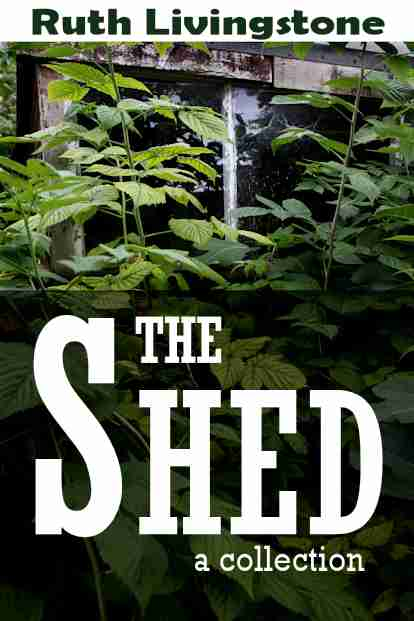 the-shed-createspace